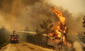 Wildfires blaze on southern Turkish coast near Manavgat