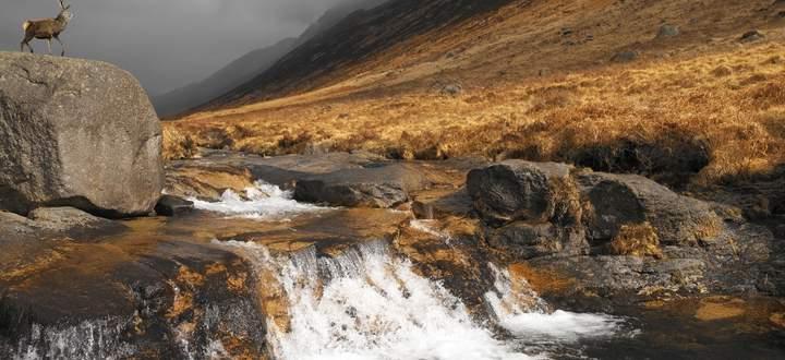 Karg, mystisch, urwüchsig: Das Bild von Schottland verfestigt sich auf Arran.