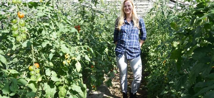 Petra Fleischhacker lässt in ihrer Simmeringer Gärtnerei Paradeiser, Gurken und anderes Gemüse noch im Mutterboden, wie das im Fachjargon genannt wird, wachsen. Sie setzt auf Sortenvielfalt und biologische Wirtschaftsweise.