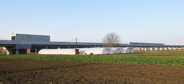 In wenigen Jahren werden auch diese Felder verbaut sein. Mit der Stadtentwicklung um die Station An den alten Schanzen sollen Tausende neue Wohnungen entstehen.