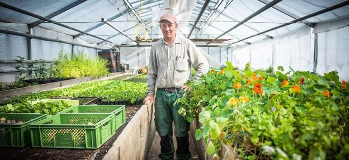 Florian Kothny betreibt gemeinsam mit seiner Partnerin, Galina Hagn, die Gärtnerei Bioschanze, die sehr klein strukturiert ist, aber auch Exotisches wie Ingwer kultiviert.