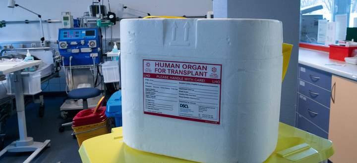 Symbolfoto, Organtransplantation, Organspende, Transportbox, Organspende, *** Symbol photo, organ transplant, organ dona