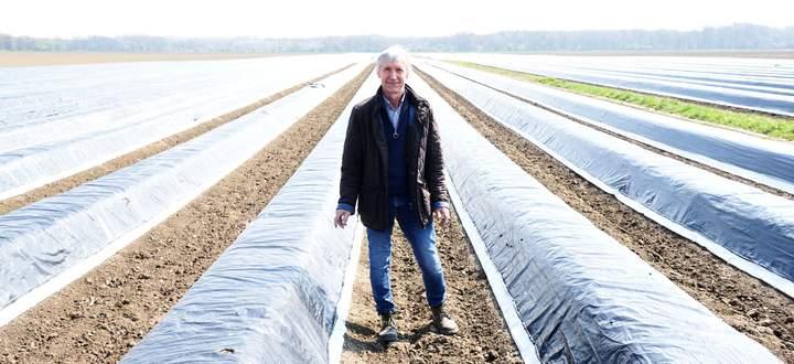 Werner Magoschitz produziert weißen, grünen und purpurnen Spargel im Marchfeld. Zu Spitzenzeiten sind bis zu 200 Menschen im Einsatz.