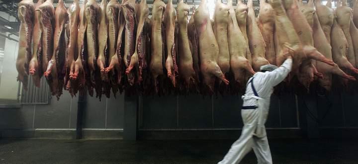 Die Fleischproduktion ist global vernetzt. Dass unser Schweinefleisch so billig ist, verdanken wir auch den Asiaten, die jene Teile kaufen, die wir nicht essen wollen.