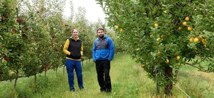 Eva und Matthias Eichberger bewirtschaften im Mittelburgenland zwei Hektar Weingärten und einen Hektar Obstanlagen. Sie machen daraus Säfte und Cider.