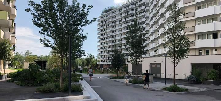 Betonierte Wege, großzügig eingesetzt: Freiraum in der Biotope City auf dem Wienerberg in Wien-Favoriten.