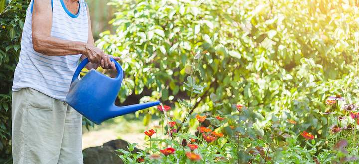 Elderly woman watering plants in her garden Copyright: xtommyandonex Panthermedia27332300 ,model released, Symbolfoto