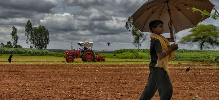 Harte Arbeit und wenig Ertrag. Viele indische Bauern können mit ihrer Tätigkeit nur wenig verdienen.