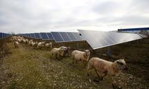 Erneuerbare Energie ist eines von vielen Anlagethemen bei Green Bonds.