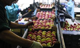 Eine neue Regelung stärkt die Position von Landwirten gegenüber mächtigen Handelsketten.