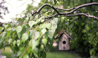 Die Nachfrage an Gärten hat sich um 16 Prozent gesteigert.