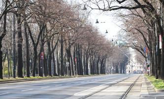 Der leere Ring in Wien: Hebein will Straßen sperren, die SPÖ nicht.