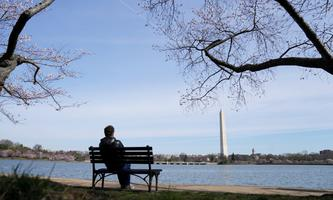 A man sits alone looking towards the Washington Monument in Washington amid the coronavirus pandemic