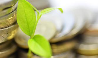 Was den Menschen wichtig ist: ihr Geld in jene Firmen zu stecken, die Rücksicht auf Umwelt und Klima nehmen.