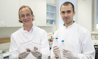 Bioarchäologe Jan Cemper-Kiesslich und Rechtshistoriker Daniela Mattiangeli.
