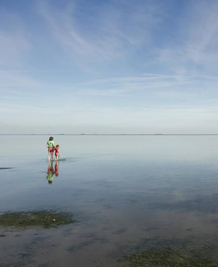Wattwanderung auf der Insel Föhr