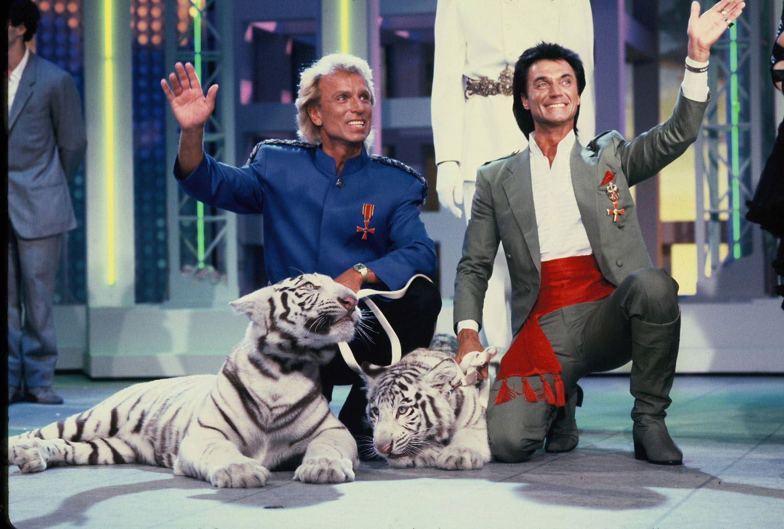 Siegfried und Roy bei einem Fernsehauftritt mit Ihren weissen Tigern im Juni 1987.