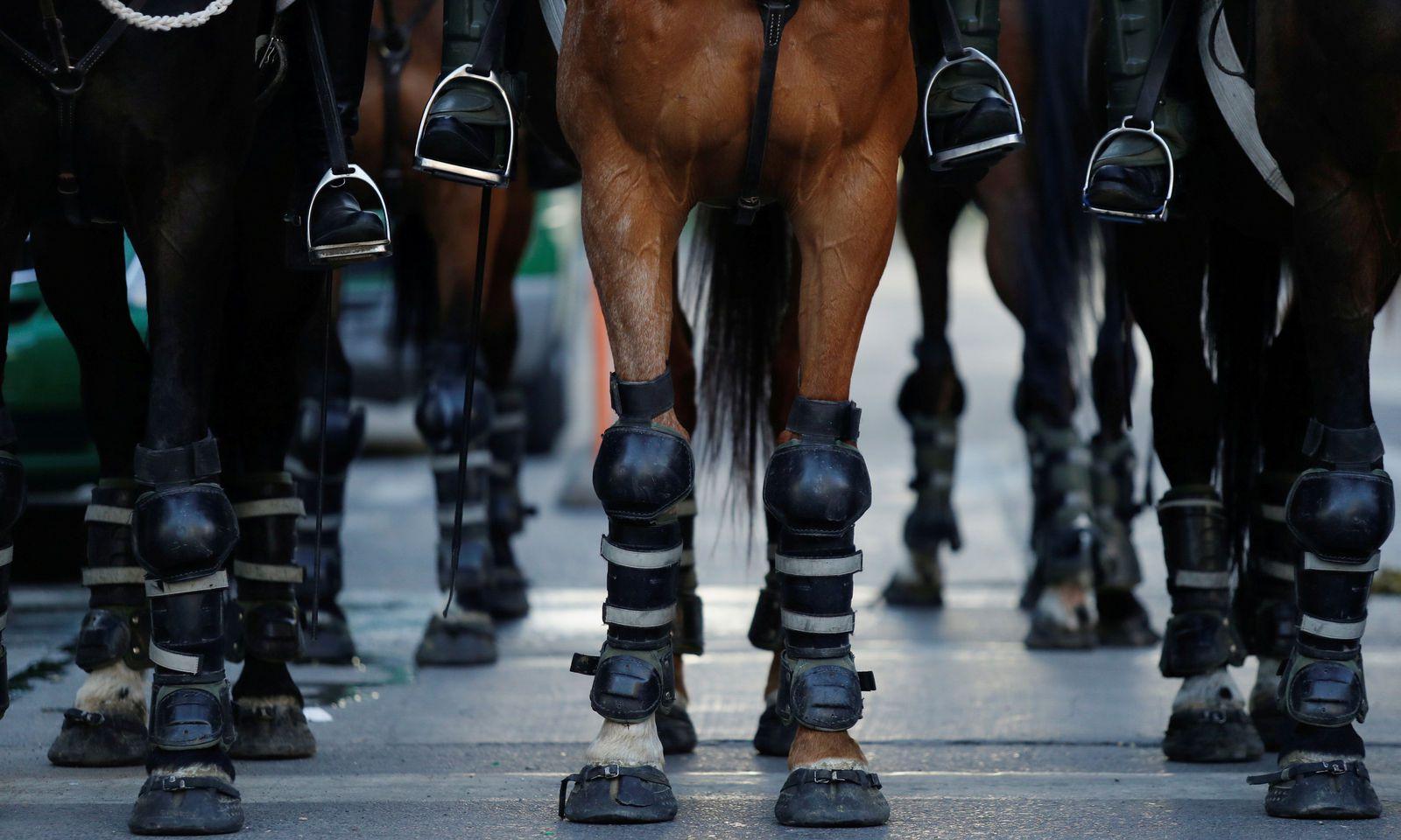 Bei Protesten gegen die Regierung tragen auch die im Einsatz befindlichen Pferde der Sicherheitskräfte Schutzkleidung.