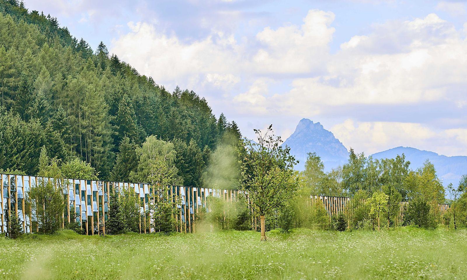 Geheizt wird mit Erdwärme, frische Luft kommt vom nahen Waldrand.