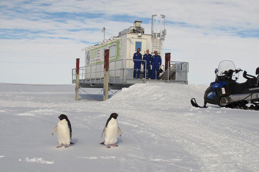 EDEN-ISS-Station in der Antarktis