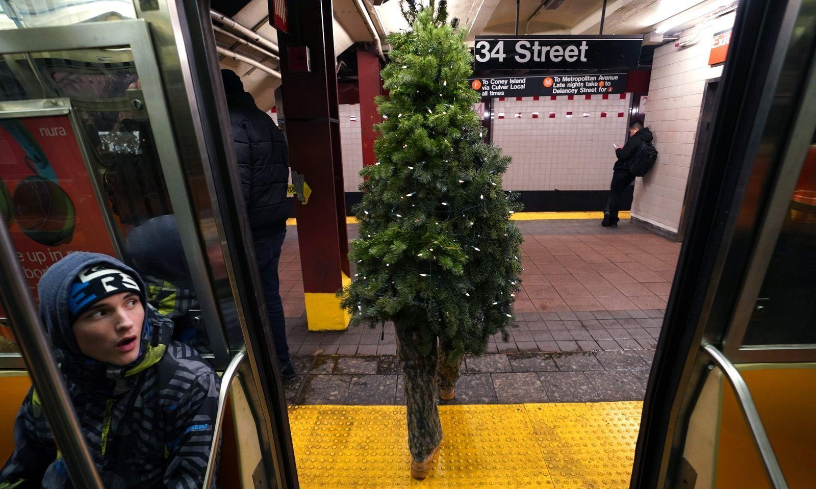 """""""Mr. Christmas Tree"""". So nennt sich Thomas Liberto aus Bel Air im US-Bundesstaat Maryland. Gekleidet in einen Christbaum zieht er durch die Straßen New Yorks. Ihm dürfte das Spaß machen: Schon fünf Jahre gibt er sich zu Weihnachten als Christbaum."""