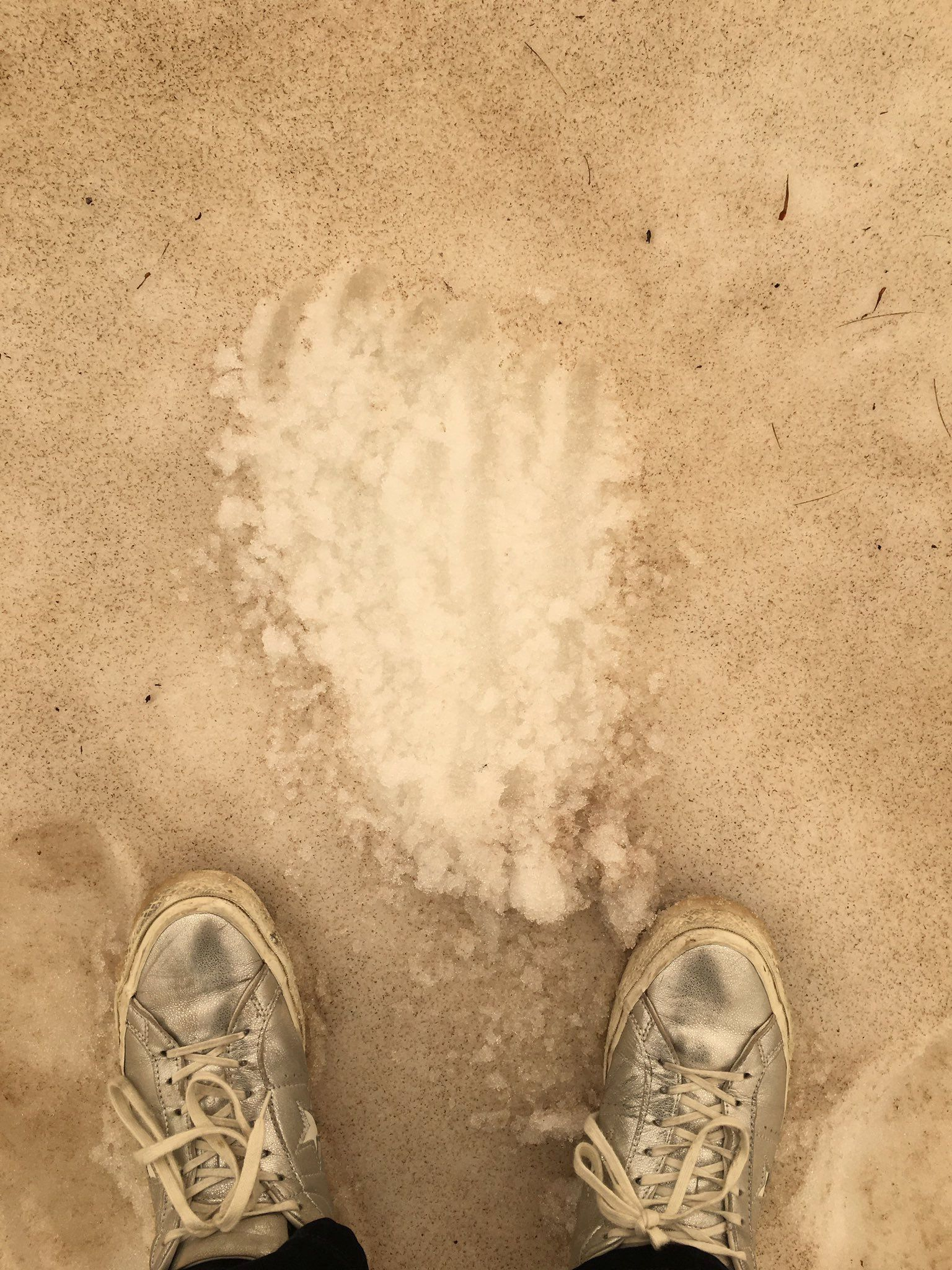 Brauner Schnee im Westland Tai Poutini National Park