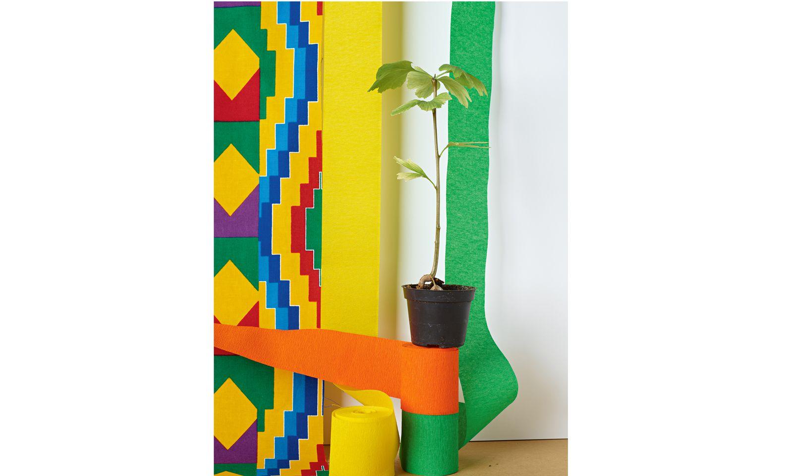 Maserung. Einen Ginkgo setzte Annette Kelm in ihre gleichnamige Arbeit, die 2019 entstand.