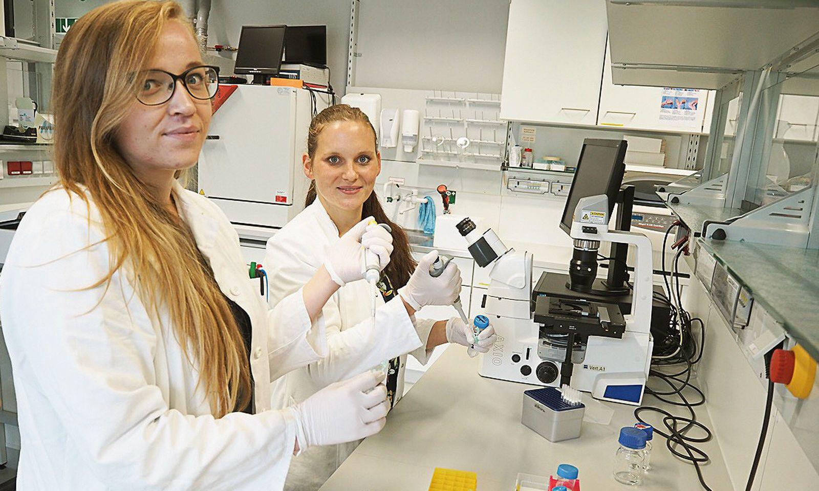 Victoria Sarne schnipselt mit ihrer Supervisorin Rita Seeböck an Krebsgenen.