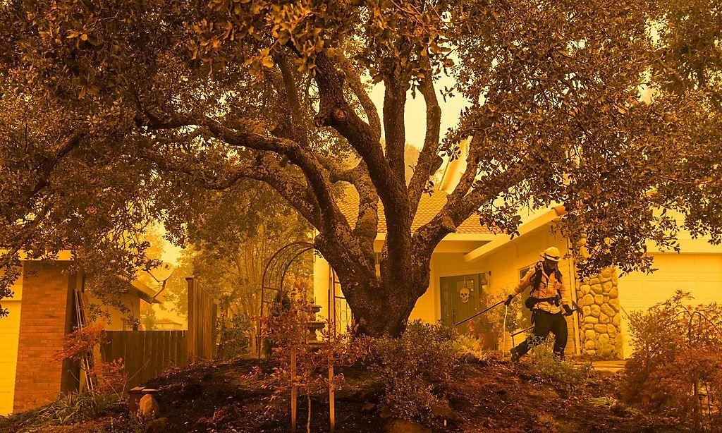 Ein Bild aus Windsor, Kalifornien, wo Feuer, Rauch und Asche die Luft erfüllen.