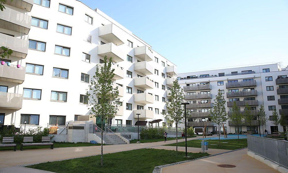 Immobiliensuche mietwunsch steigt immobilien for Immobiliensuche privat