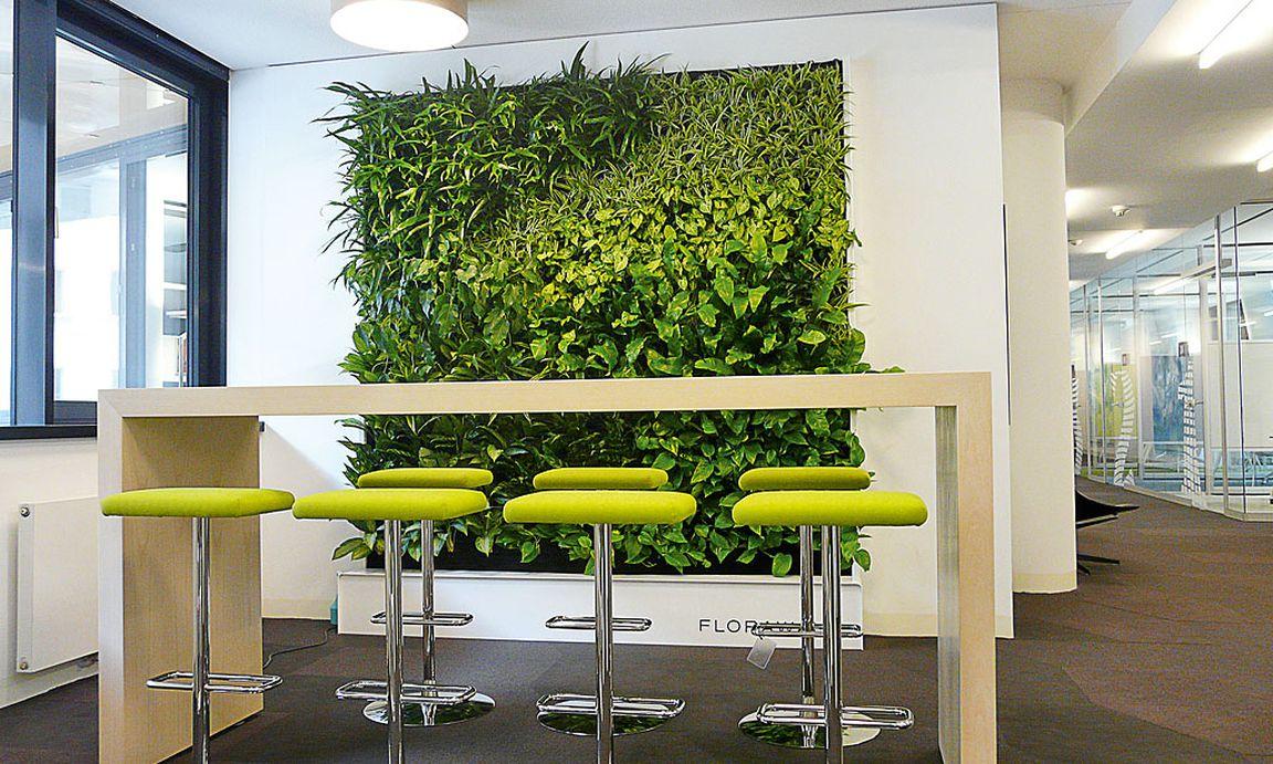 Wandpflanzen sattes gr n statt kahler mauern - Vertikale wandbepflanzung ...