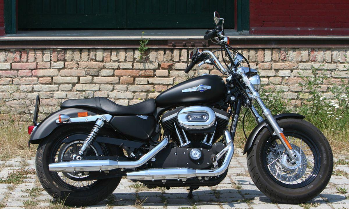 Flughörnchen im Wind: Harley für den Nachwuchs « DiePresse.com