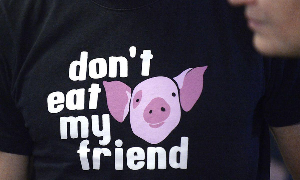 Tierschützer Prozess Böswilligkeit Nicht Zu Erkennen Diepressecom