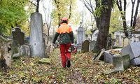 Bis Freitag befreien Soldaten den Friedhof von Gestrüpp und Wildwuchs.