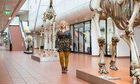 Die Kroatin Vedrana Šlipogor kennt die Äffchen an der Uni Wien seit 2012: Ihre Experimente zeigen die soziale Wahrnehmung und Intelligenz der Tiere.