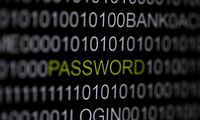 The word ´password´ is pictured on a computer screen in this picture illustration taken in Berlin