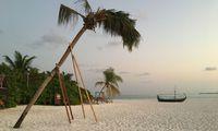 Eine Insel wie aus dem Bilderbuch: Palmen am weitläufigen Sandstrand.