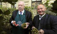 Ex-Bürgermeister Michael Häupl bei der Weinlese