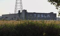 Teslas Riesenfarbik in Shanghai