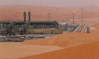 Zum Börsendebüt des Ölkonzerns Saudi Aramco werden immer mehr Details bekannt.