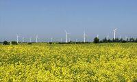 Eine staatsnahe Organisation kauft heimischen Ökostrom zu Wucherpreisen auf.