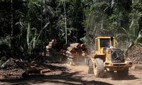 Ein Bild aus Bom Retiro, wo dem Amazonas-Regenwald zu Leibe gerückt wird.