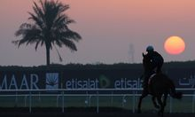 UAE HORSE RACING DUBAI WORLD CUP 2013