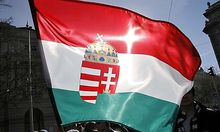 Hungarian anti-government demonstrator waves the national flag in Budapest