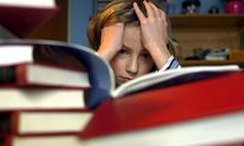 Bildungsexperte erschreckt Zustand Familie