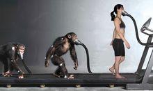 Menschheitsevolution Spieltheorie