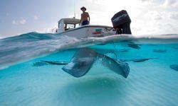 Beliebt. Tauchfahrt in die babyblaue Lagune mitten im Ozean. / Bild: (c) imago/Danita Delimont
