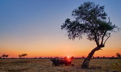 Rötlich. Sonnenuntergang im Südluangwa-Nationalpark in Sambia.  / Bild: (c) Time + Tide/Andrew Macdonald