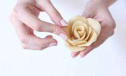 So soll Ihre Rose am Ende aussehen / Bild: Anna Pachner