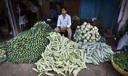 Südindien ist das Ursprungsland der Gurke. Und das Land der Gewürze. / Bild: (c) Michael Langoth